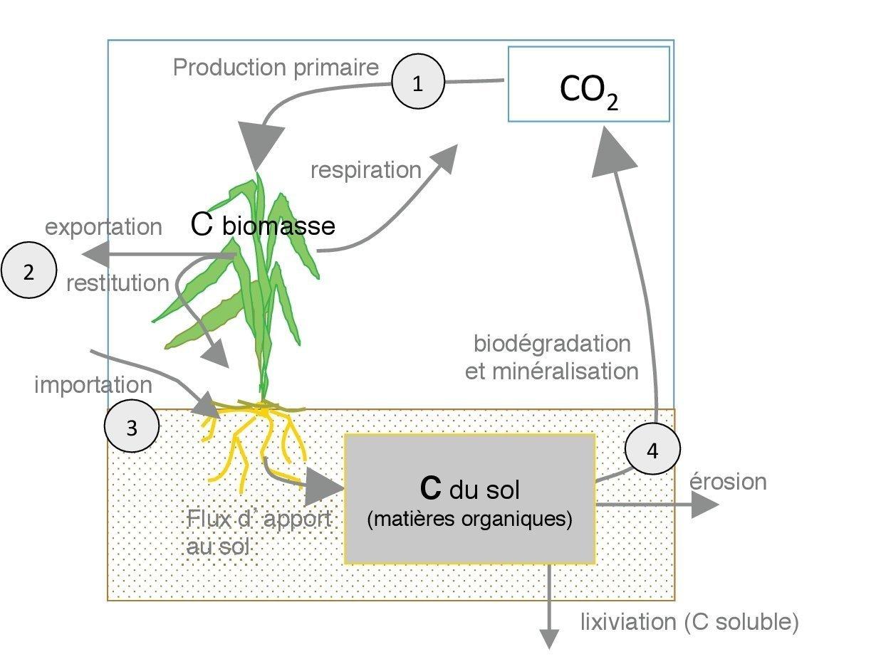 inra-stockage-de-carbone-dans-les-sols_