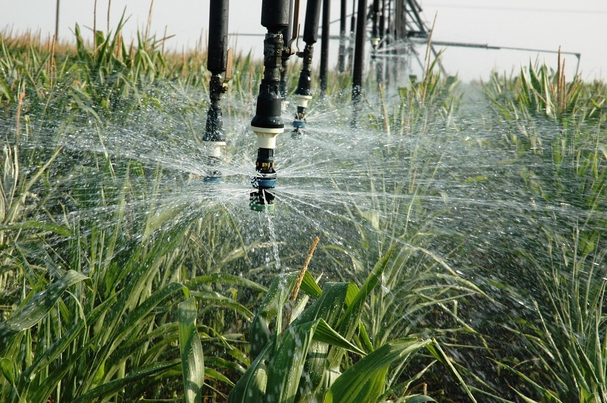 Eau irrigation restrictions