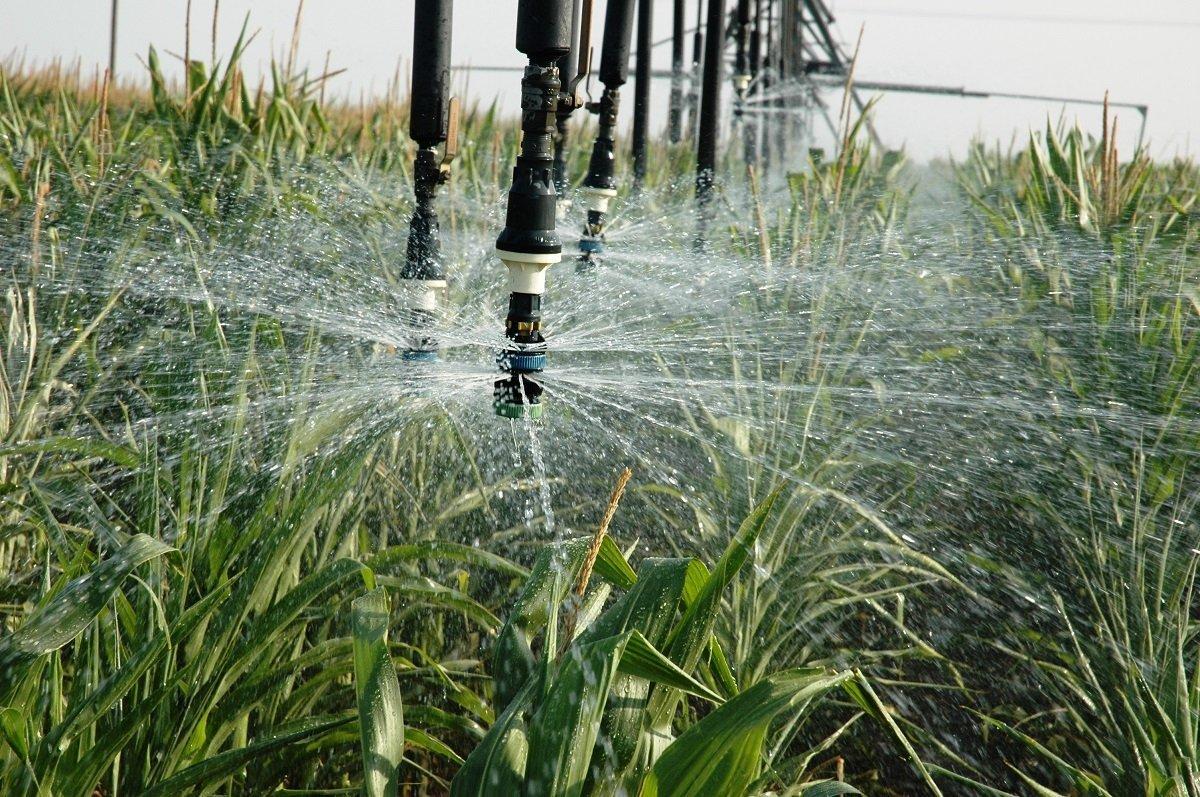 Eau irrigation restrictions