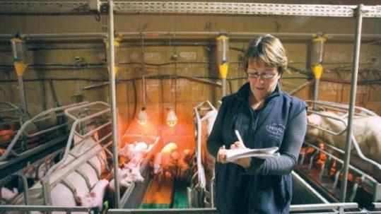 Catherine-est-eleveuse-de-porcs-en-Loire-Atlantique