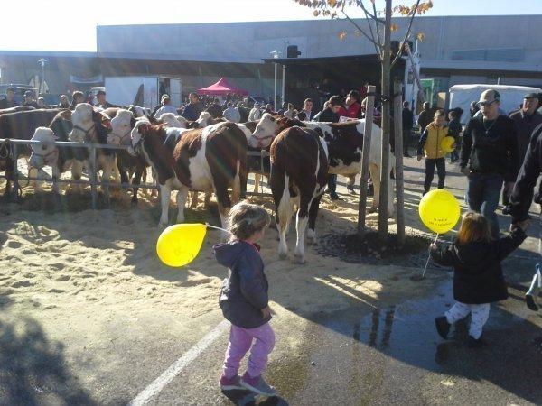 enfants avec ballons jaunes de la CR
