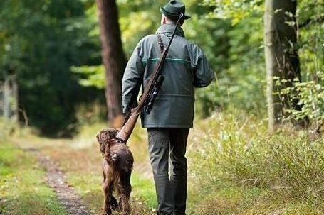chasse_dimanche