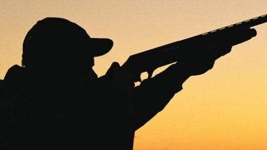 chasse et permis de chasse