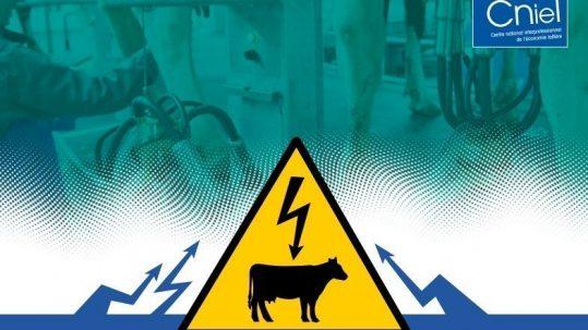 courants parasites en élevage laitier