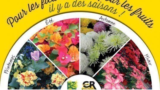 Affiche saisons Uniphor