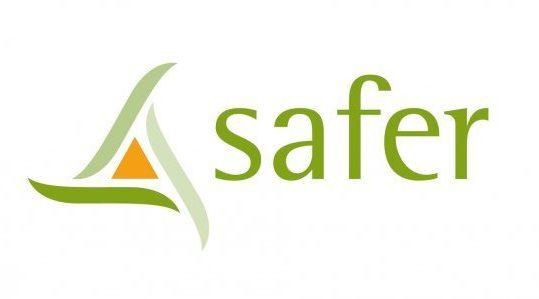 Logo Safer