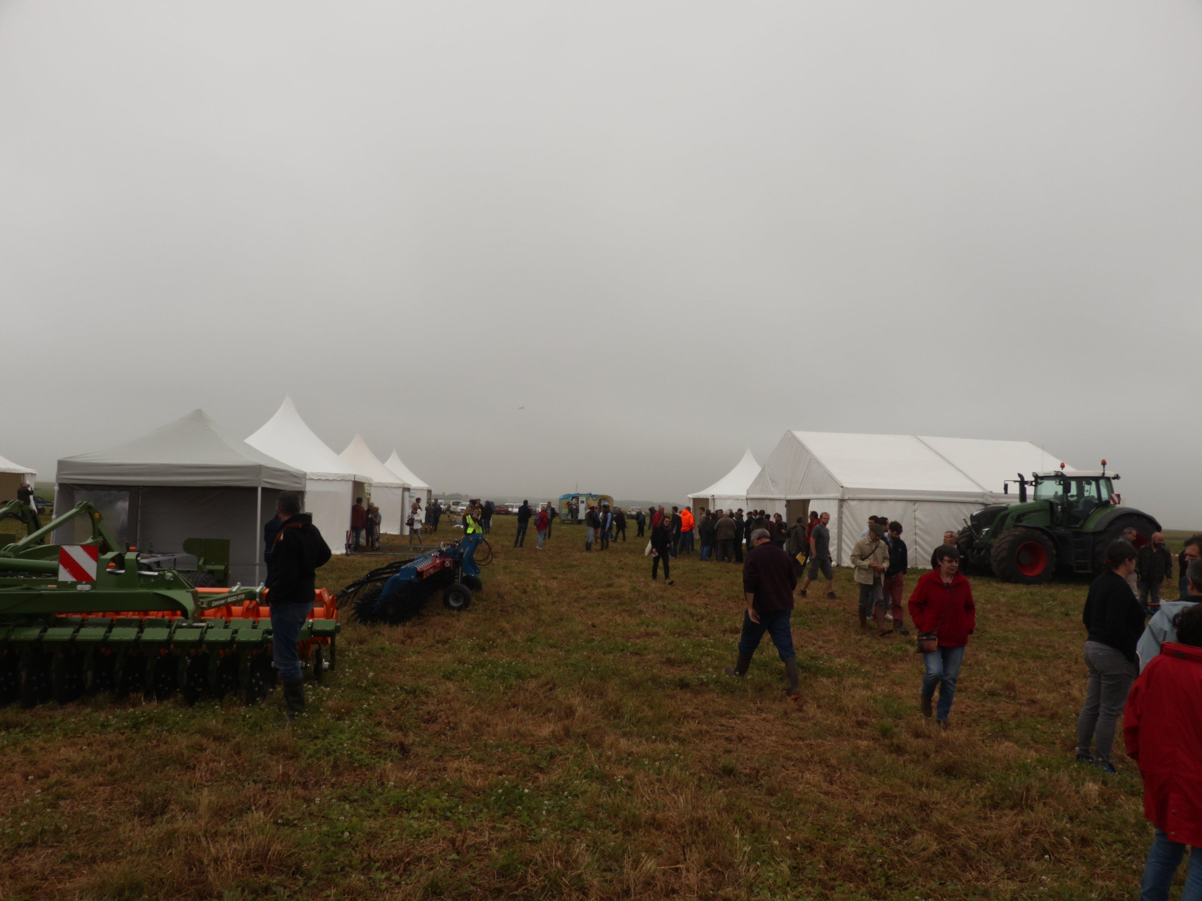 festival bio