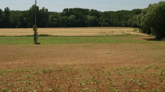 sécheresse gers 2011