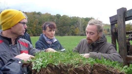 agriculture de conservation des sols