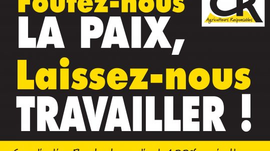 Affiche Paix