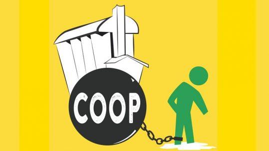 coopératives