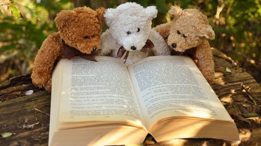 teteddy-bear-2855982_960_720