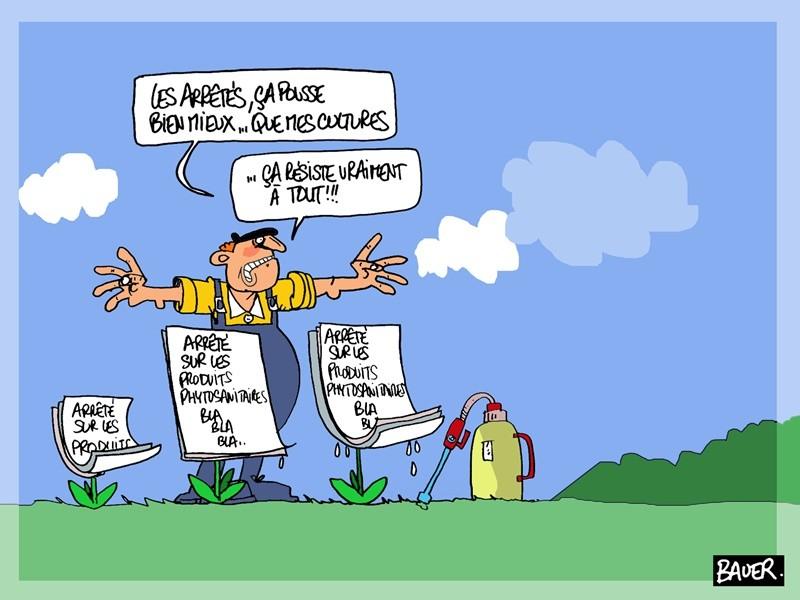 """dessin de presse Bauer - arrêtés """"anti-pesticides"""" phytos"""