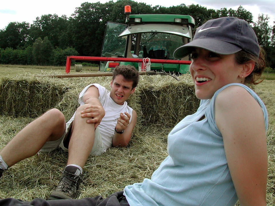 agriculture-91152_960_720