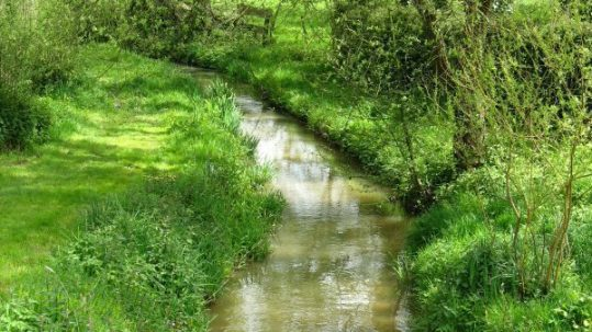 Cours d'eau BCAE