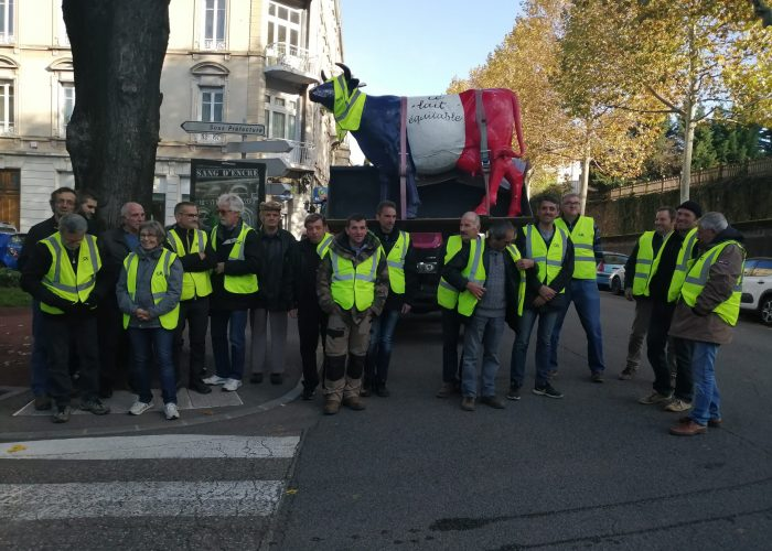 Manifestation Vienne nov 19