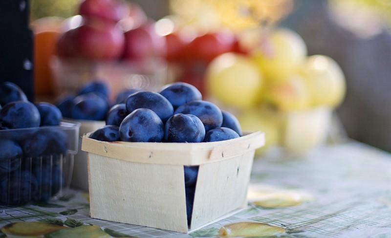 prunes fruits marché CP