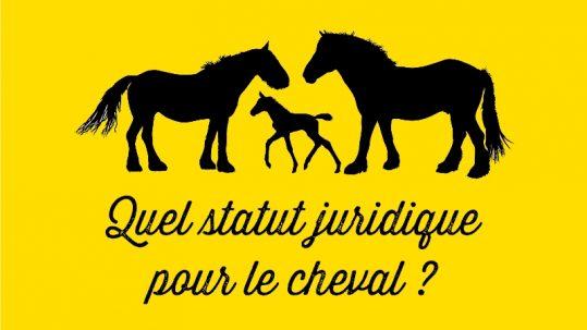 statut juridique cheval animal de compagnie animal de rente