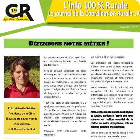 cr19 journal novembre 2020