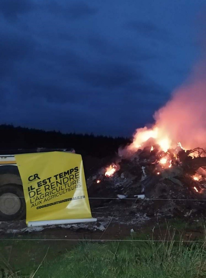 201219 - feu detresse predation CR71 Mont
