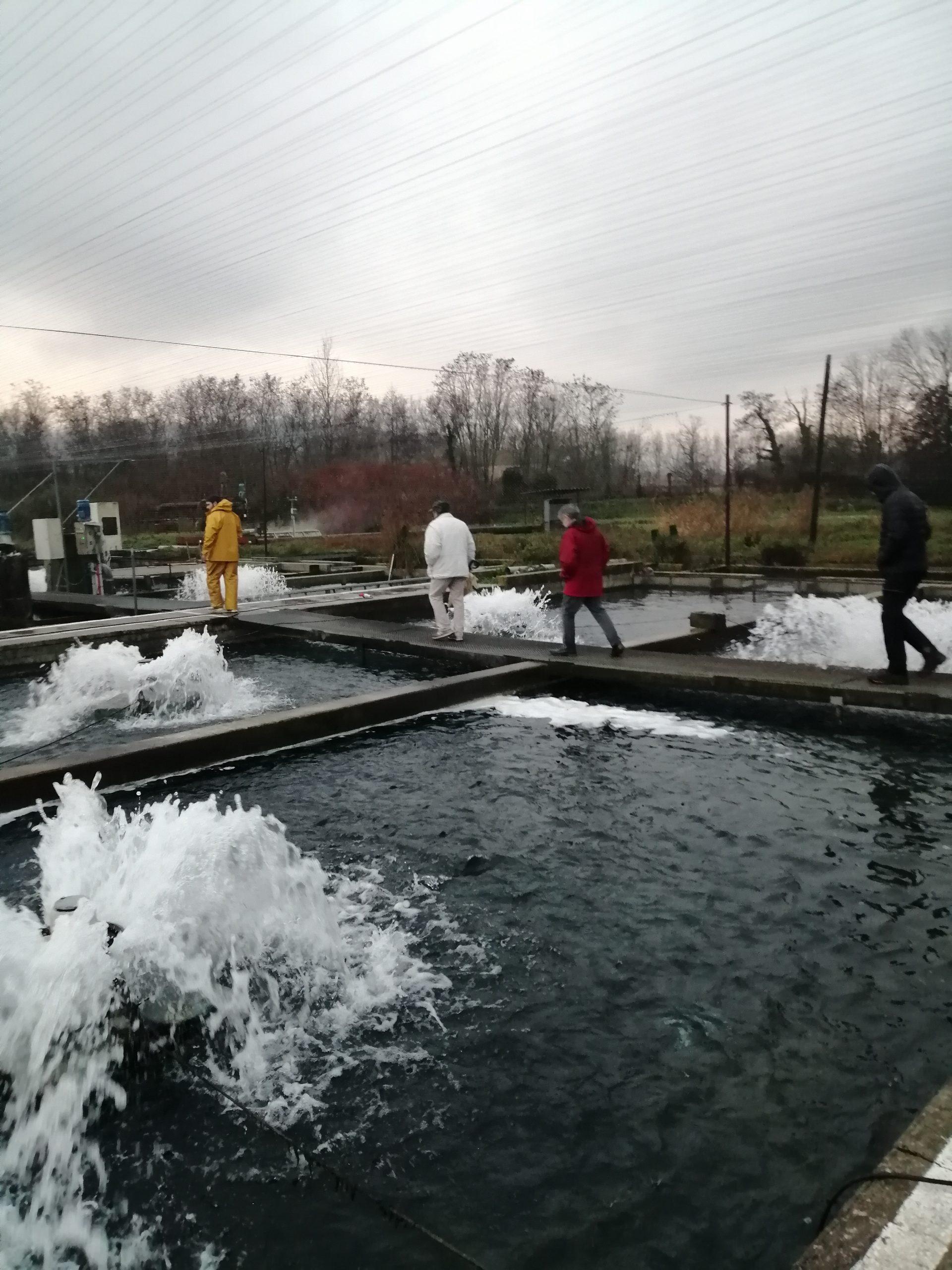 pisciculture CR26